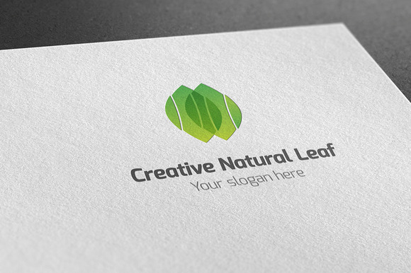 Creative Natural Leaf Logo