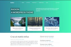 Radion Wordpress theme