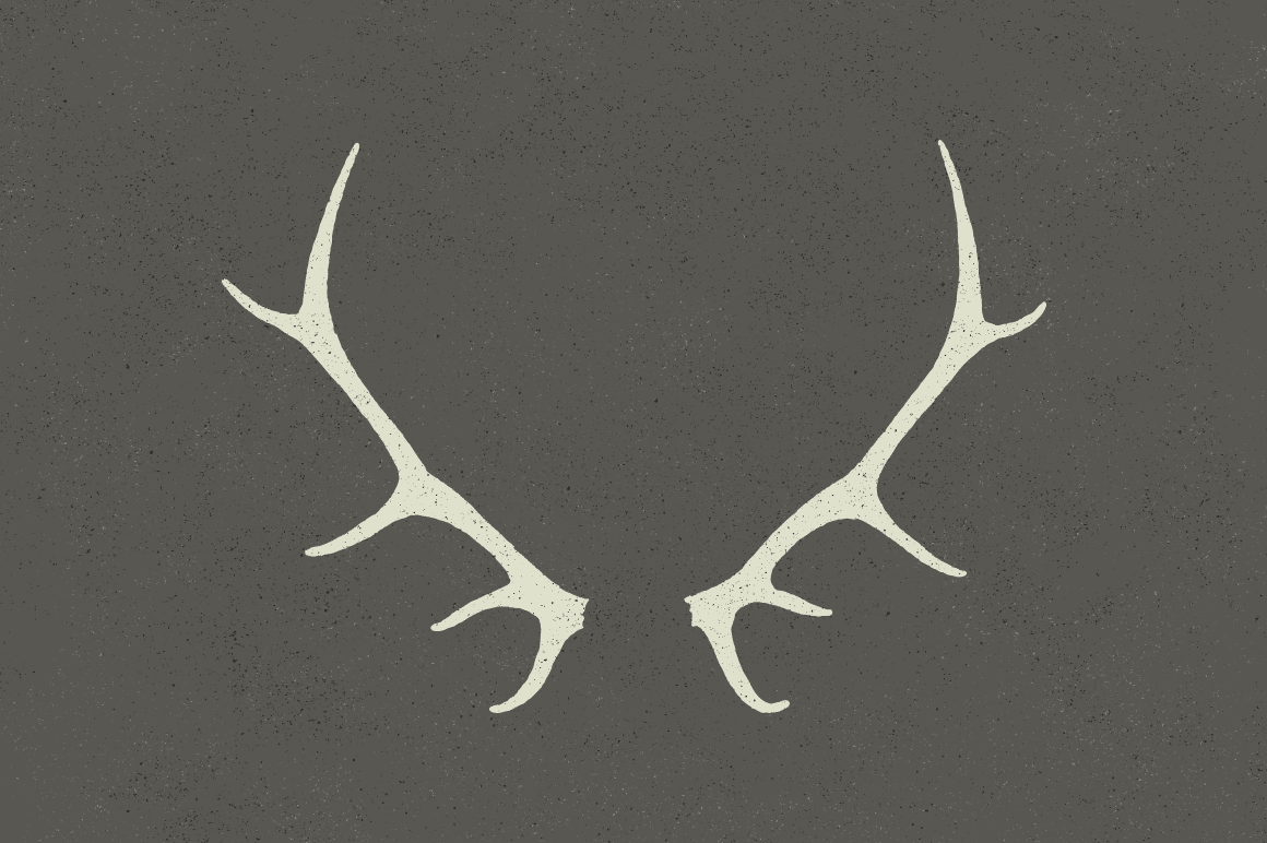 6 Deer Antlers - Hand Illustrated ~ Objects on Creative Market