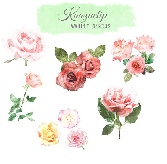 Watercolor Rose Collection