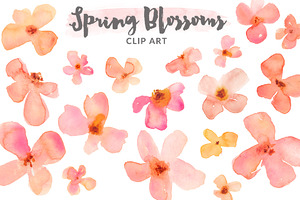 Watercolor Clipart - Spring Blossoms