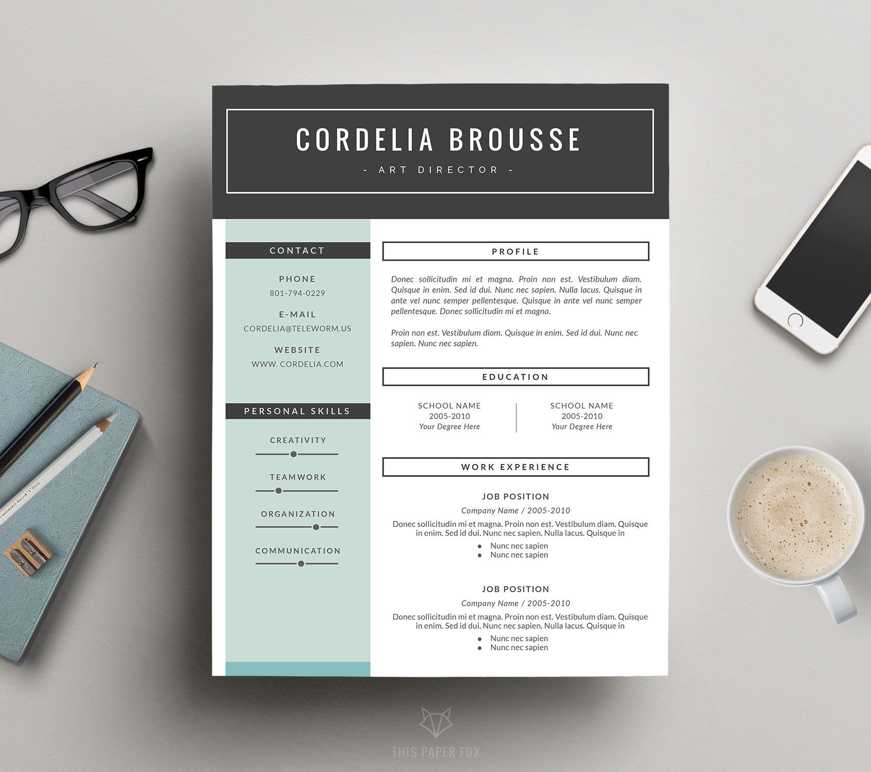 resume template 3 pages  cv template
