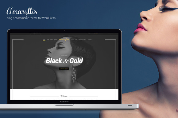 Amaryllis – WordPress Theme