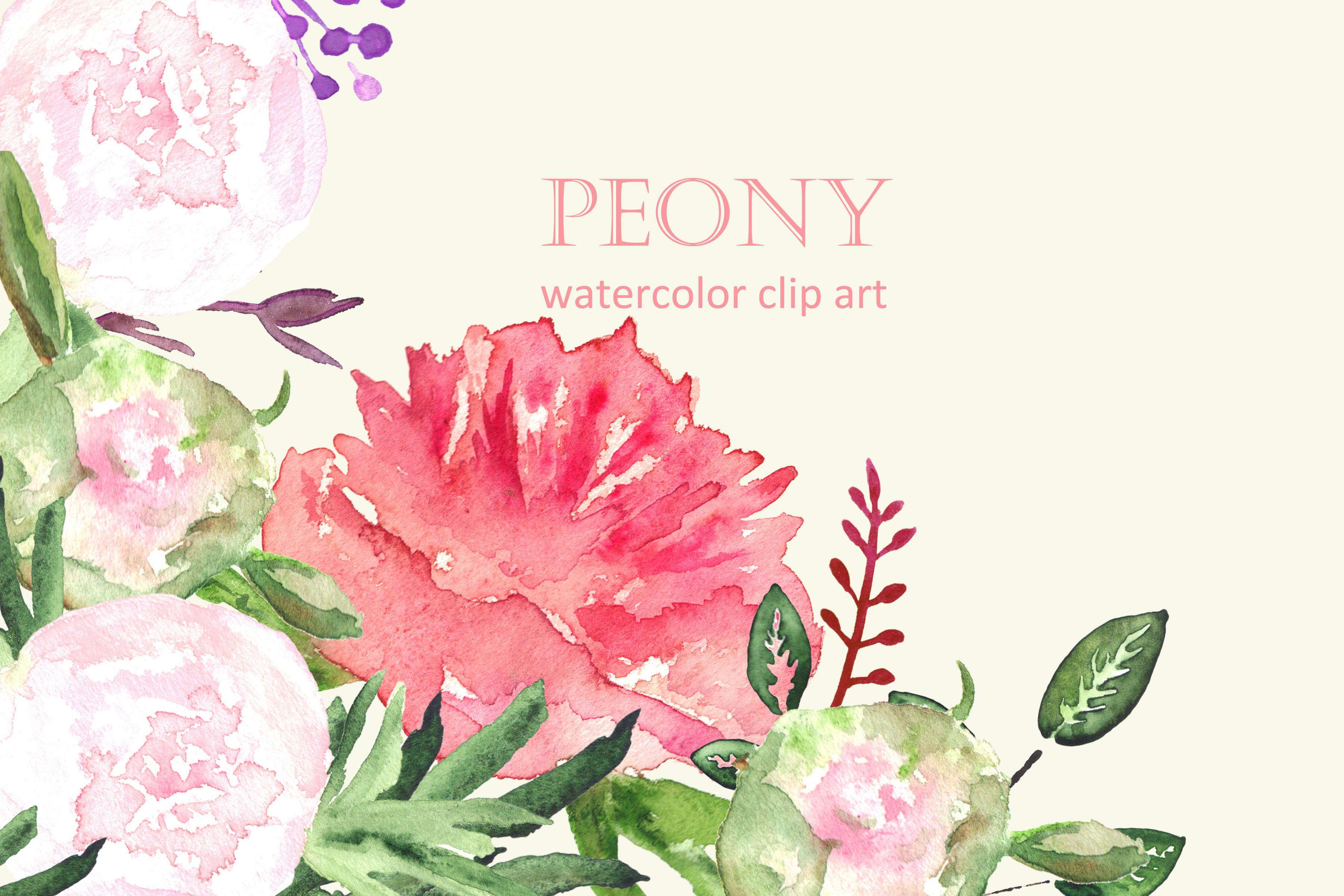 Peony set watercolor clip art ~ Graphics on Creative Market