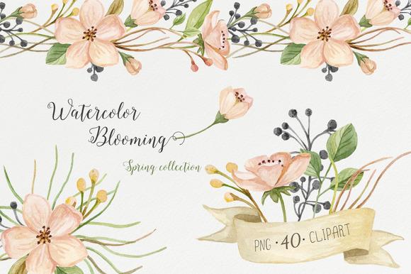 Watercolor blooming. Spring set - Illustrations