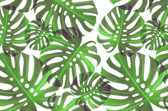 Image Gallery Jungle Leaves Background