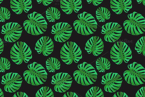 Tropical pattern. Jungle palm leaves - Patterns