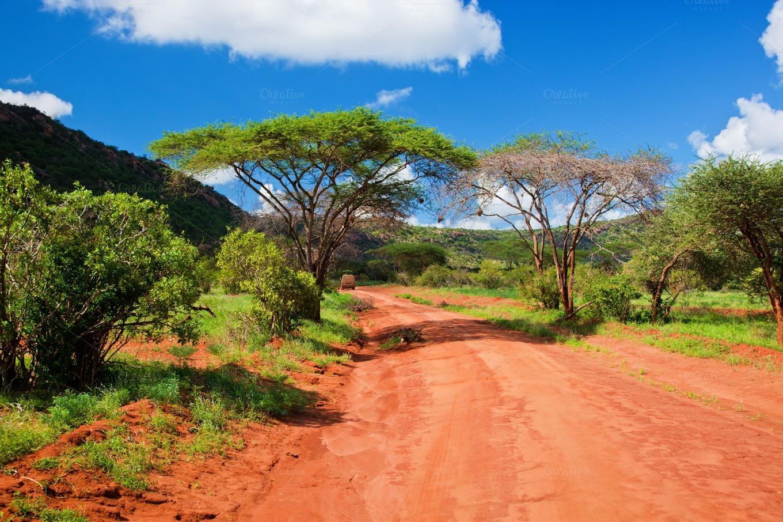 Savanna Landscape In Kenya Africa Nature Photos On