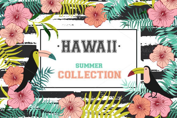Hawaii flowers. Summer collection - Illustrations