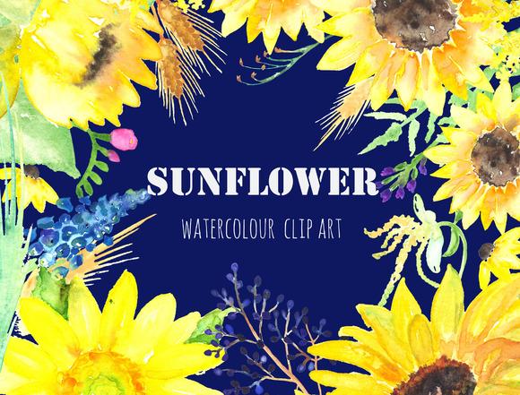 Sunflower Watercolor Clip Art Graphics On Creative Market
