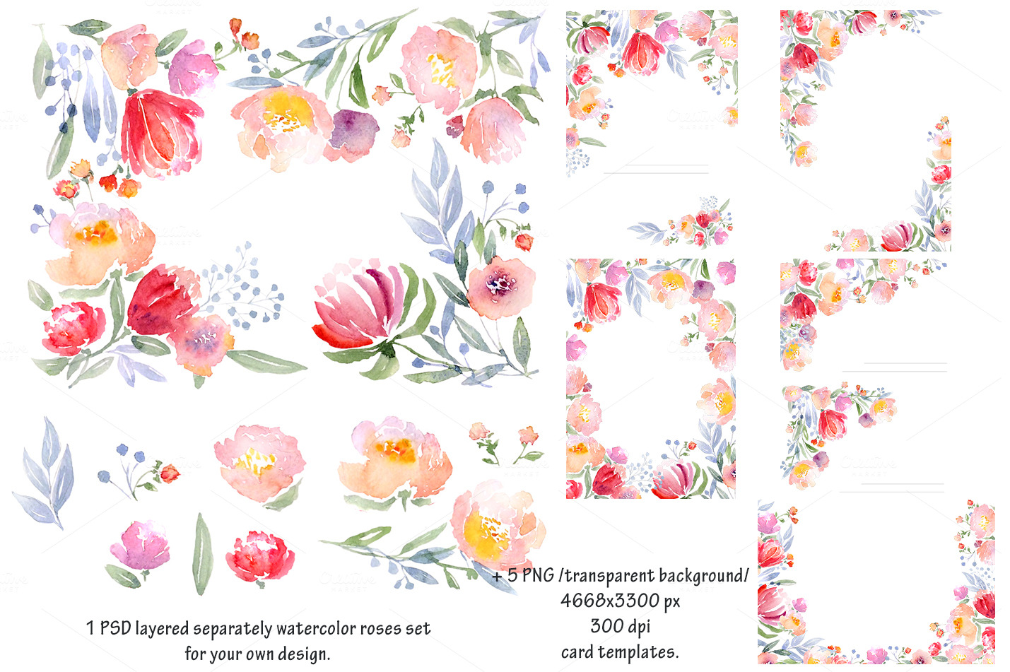 watercolor diy roses graphics set