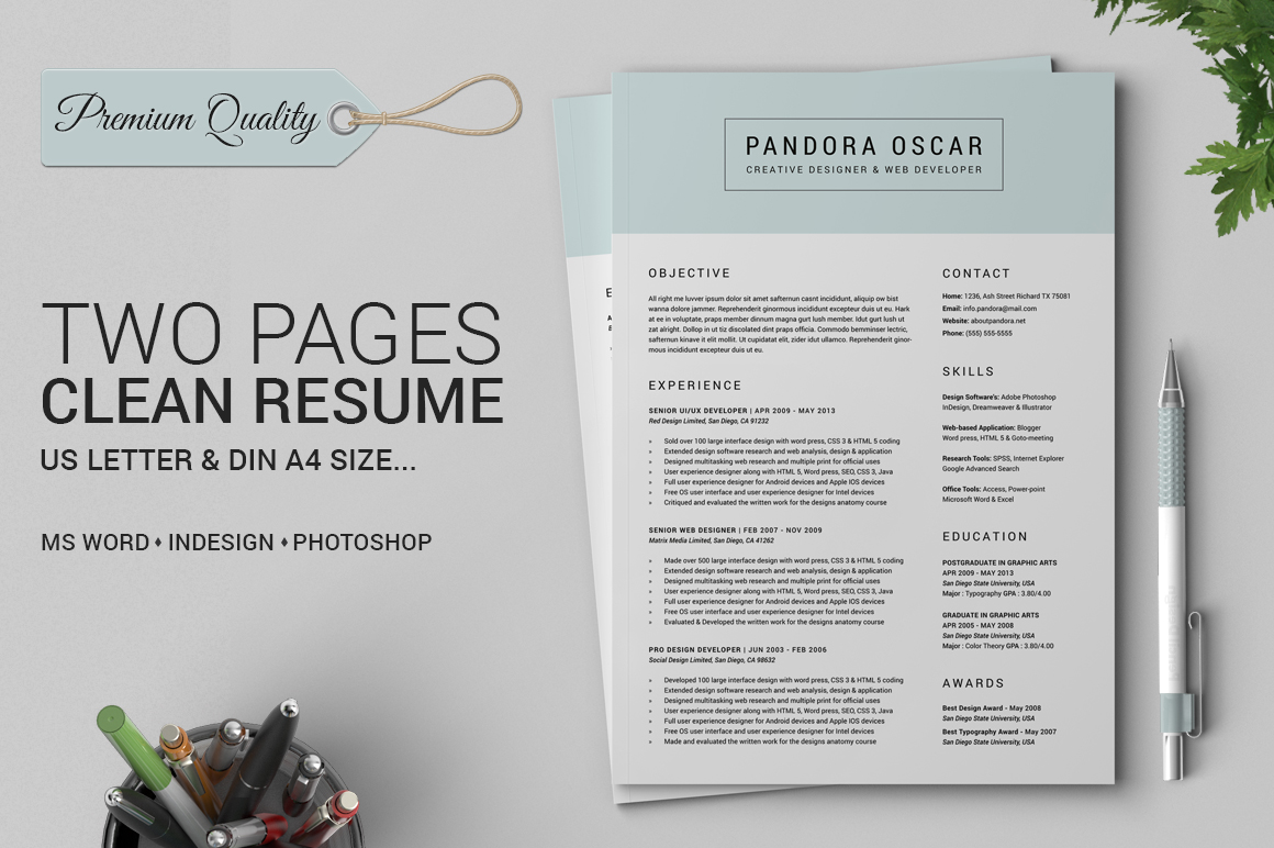 2 Pages Clean Resume CV Pandora Resume Templates on