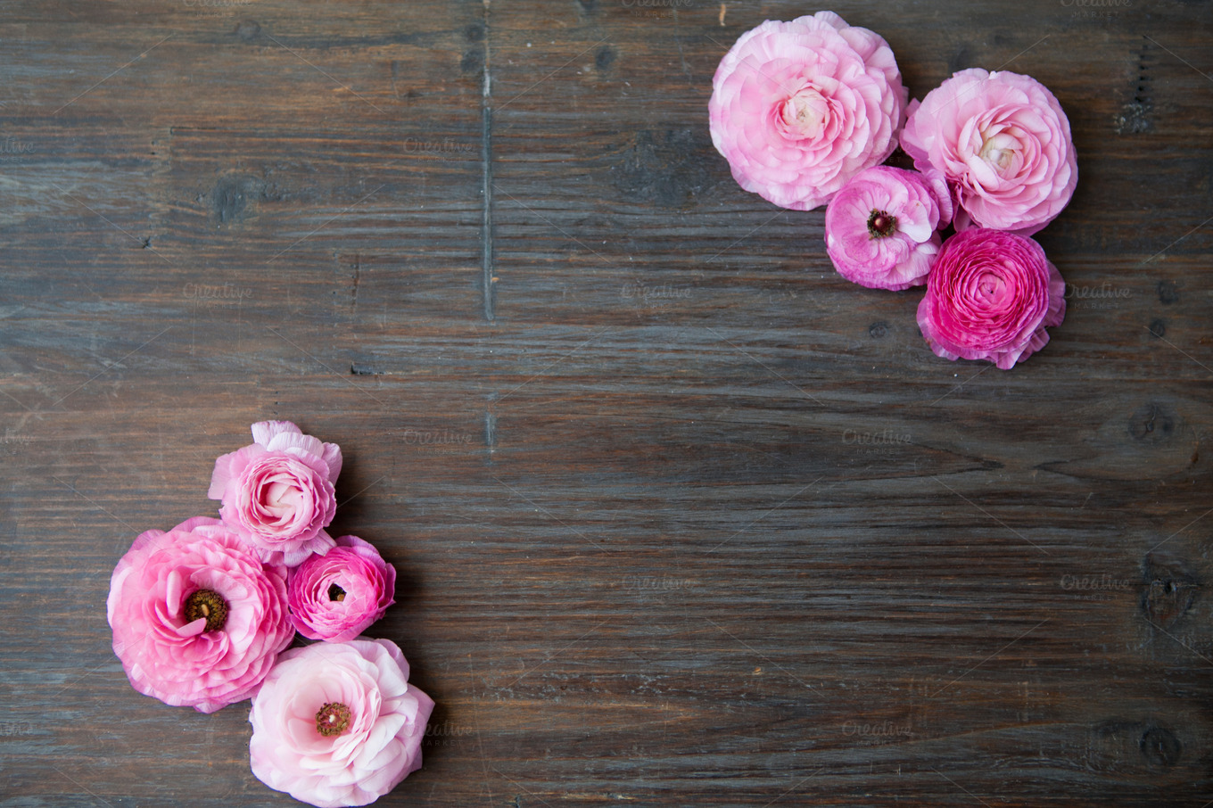 Pink Flowers On Rustic Table Nature Photos On Creative