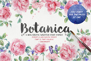Botanica Brush Family (20% -Graphicriver中文最全的素材分享平台