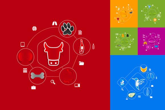 9 VETERINARY Sticker Infographic