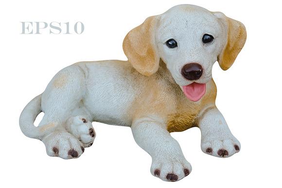 Puppy. Little dog - Illustrations