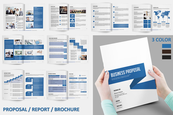 InDesign: Proposal/Report/Brochure | SiStec