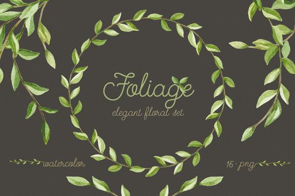Foliage. Elegant floral set - Illustrations