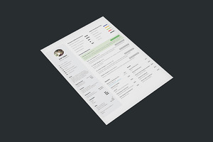 One Page Resume - 3 Styles