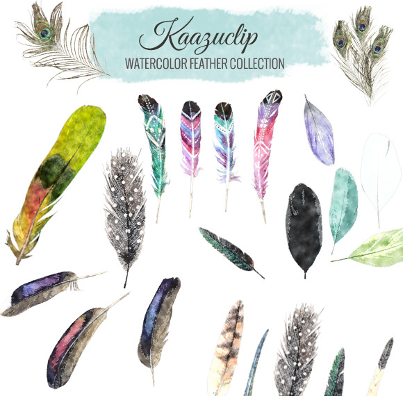 Watercolor Feather Collection