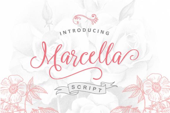 Marcella Script Font by ianmikraz