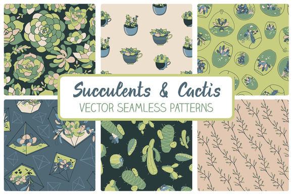 Succulents Seamless Patterns
