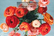 Jenna Johns: Memories Pack-Graphicriver中文最全的素材分享平台