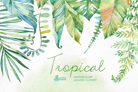 Tropical Watercolor Leaves