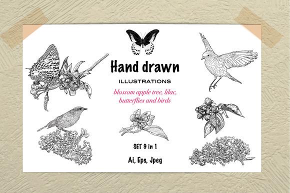 Hand Drawn Illustration Spring Set
