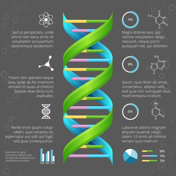 Infographic Template With DNA