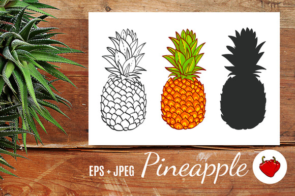 Pineapple. Hand drawn vector. - Objects
