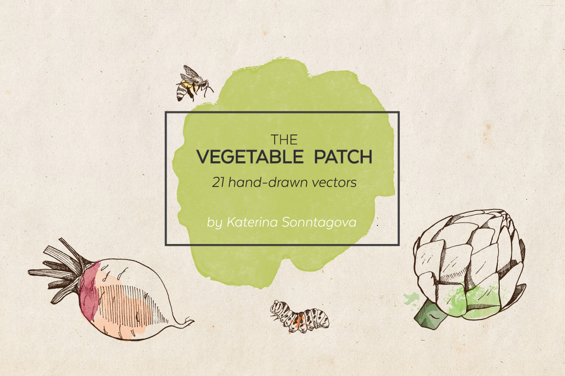 The vegetable patch illustrations on creative market for Vegetable patch