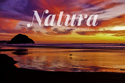 Natura Landscapes Lightroom-Graphicriver中文最全的素材分享平台