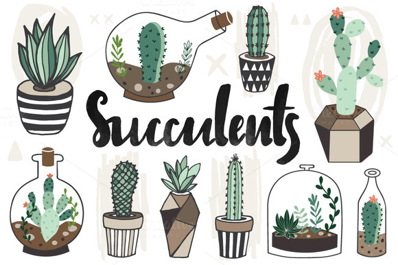 I Am Blessed Wallpaper Hand drawn Succulents ...