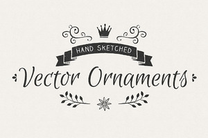 Hand Sketched Vector Ornaments