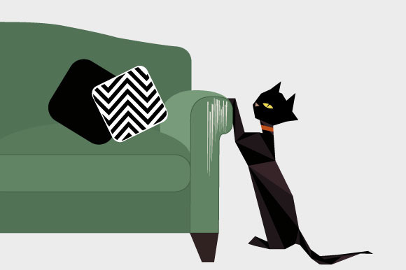 Cats Love Your Couch