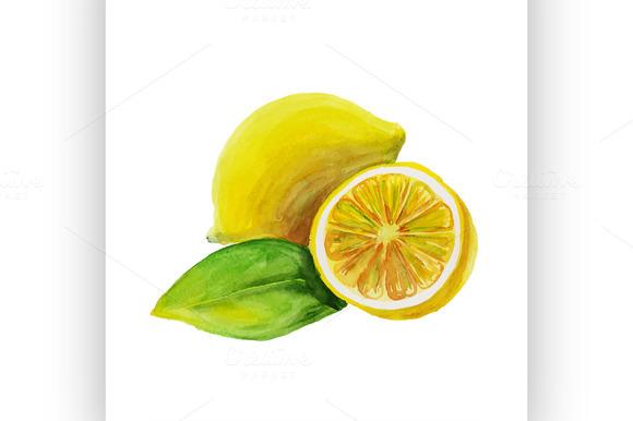 lemon. watercolor painting - Illustrations