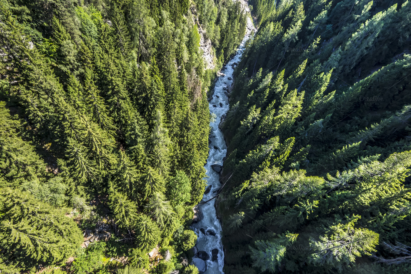 Aerial view of a forest river ~ Nature Photos on Creative ...