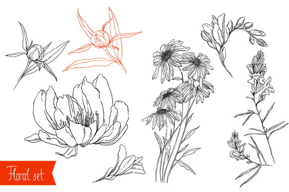 Floral Thin Line Vector Set
