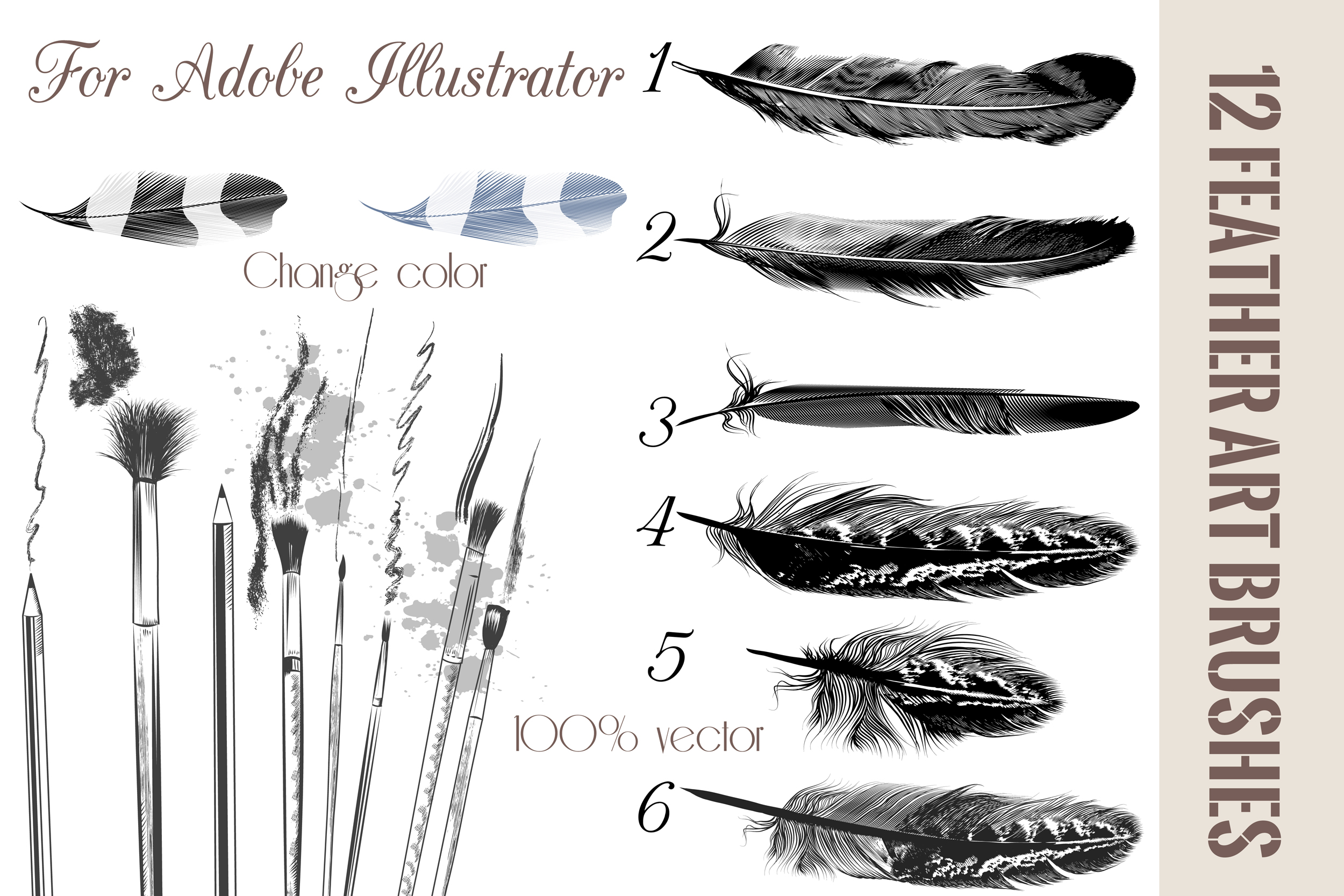 Feather brushes for illustrator on creative market
