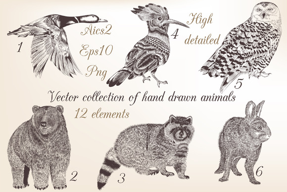 Set Of Engraved Animals