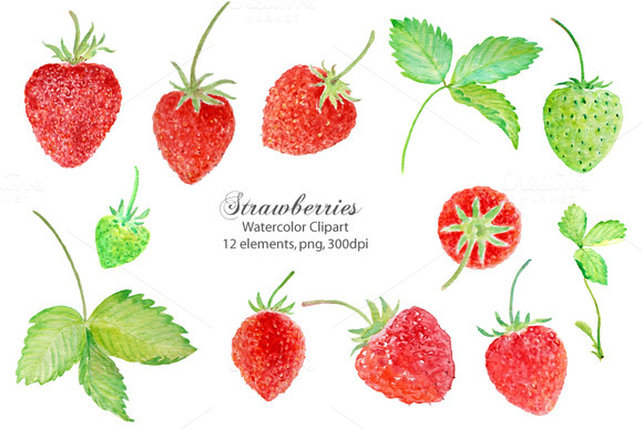 Watercolor Clipart Strawberry