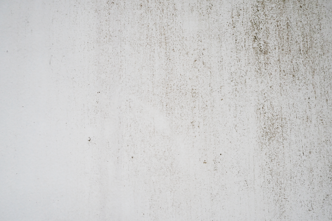 Rustic White Texture / Background ~ Textures on Creative ...