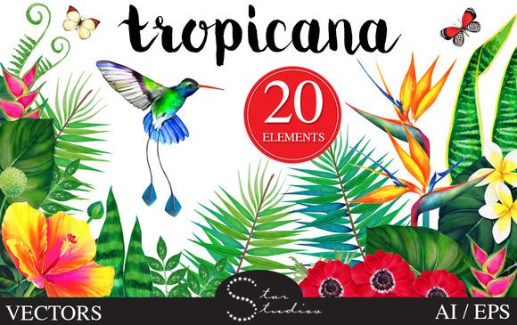 Tropicana Vector Pack