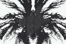 Ink Blot Tests (rorschach test)