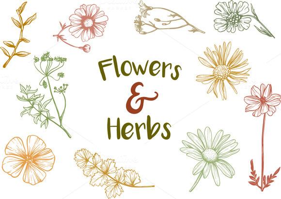 Vintage Flowers Herbs