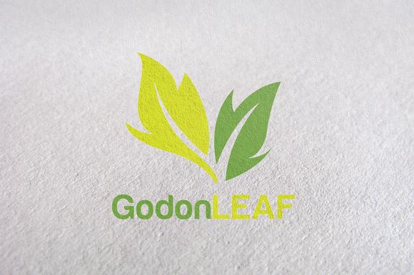 Leaf Green Nature Eco Logos