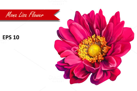 Pink Mona Lisa Flower. Vector - Objects