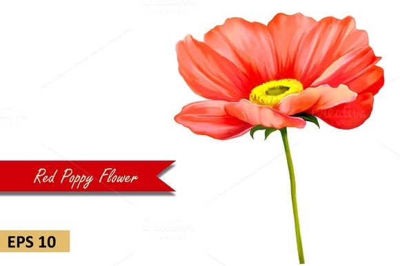 Red Poppy Flower. Vector - Objects