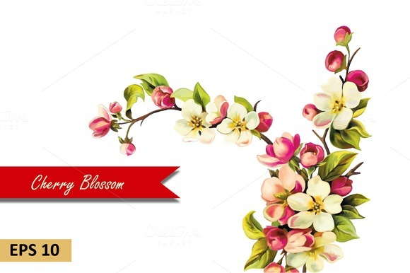 Cherry blossom flowers. Vector - Objects